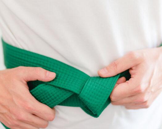 LSS Montana-Lean Six Sigma Green Belt
