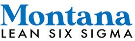 Montana_LSS-logo